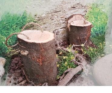 Biologisch afbreekbare urnen