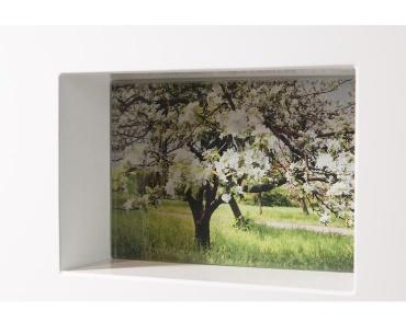 Grafsteen met Foto achter glas