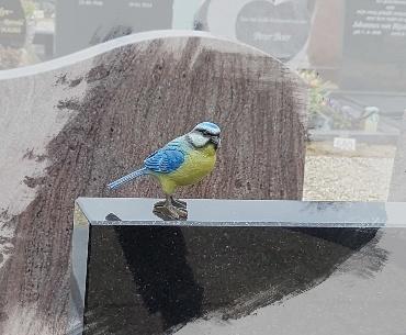bronzen vogeltje in kleur